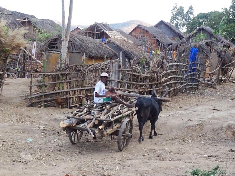 Medizinischer Auslandeinsatz Madagaskar